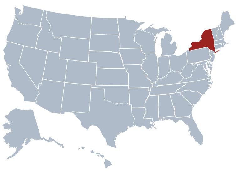 New York Population 2018