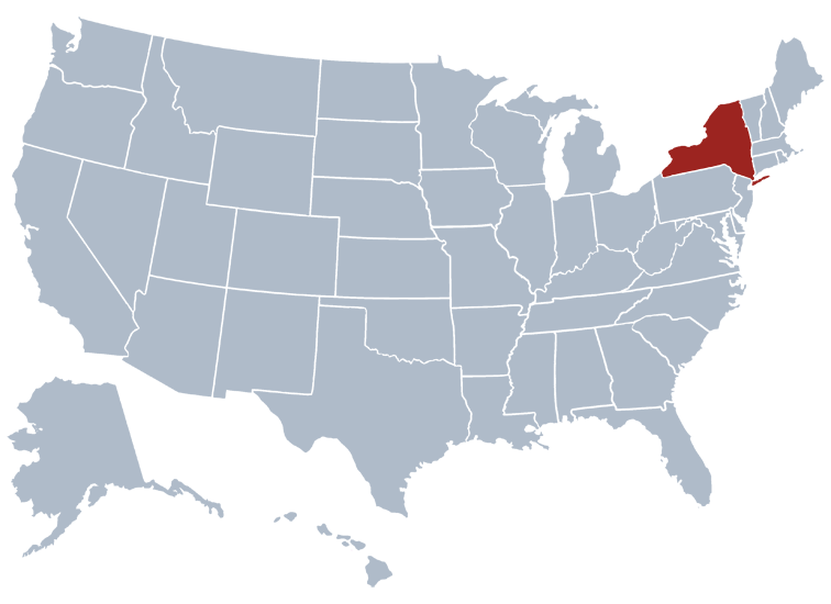 New York Population 2019